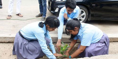 Plantation Drive Programme at Noonmati Area on Maniram Dewan Road, 23-08-2018